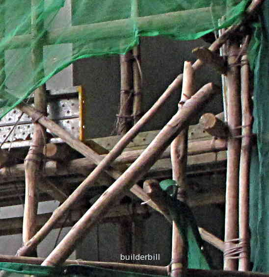 bamboo in Singapore