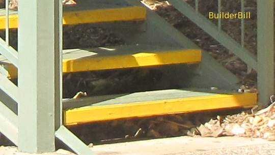 yellow step edges