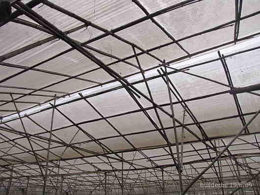 bamboo roof framing