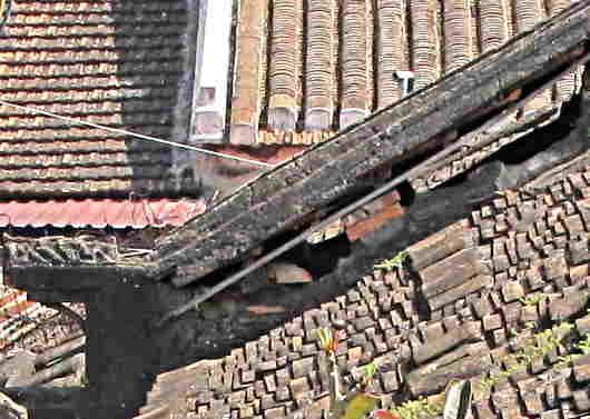 clay roof tiles in Vietnam